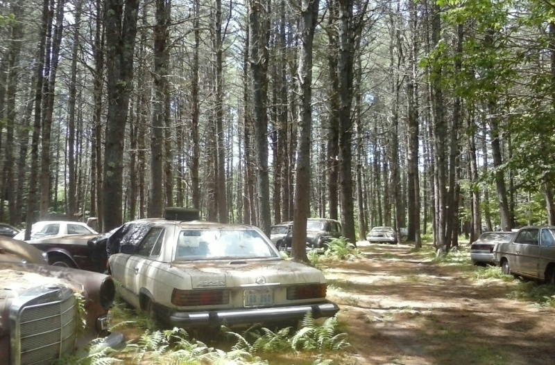 In Lebanon, a forest of cars doth a museum make