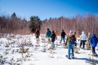 Snowshoers, hikers enjoy stunning walk through Brookfield conservation area