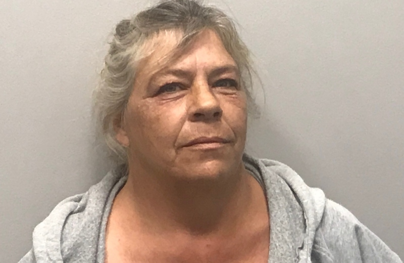 Sanford woman charged with 9 counts of assault on minor