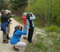 MMRG hoping birders flock to Birch Ridge Community Forest outing