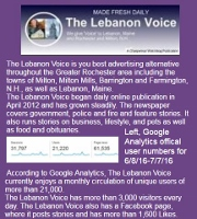 Advertisers: Check out some facts that show The Lebanon Voice is your best advertising solution