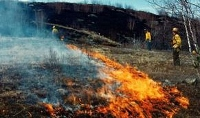 Blue Job to get prescribed burn sometime this month