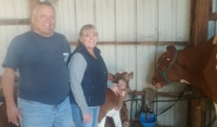 For St. Pierre, being a dairyman is a labor of love that pays little yet pays a lot