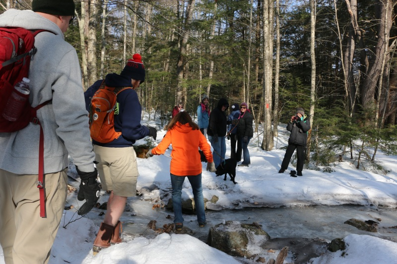 Sturdy hikers, dogs take a walk through Casey Road land pegged for conservation