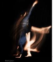 City dance studio, ROH to present Dance Northeast fest