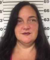 Wrong way driver on Interstate 95 arrested for DWI