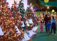 Inaugural Festival of Trees brings city a holiday glow