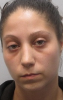 Dover woman indicted in assault on Rochester officer