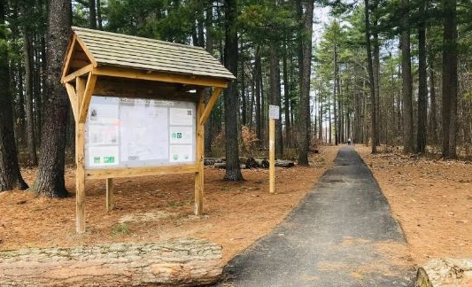 Drug overdose thought to be cause of death of man found along Hanson Pines trail
