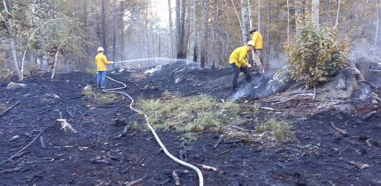 Nearly four acres charred in West Lebanon woods fire
