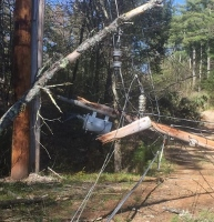 Downed tree knocks out power to Indian Lake neighborhood