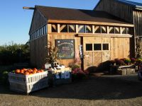 McKenzie's Farm now selling just-caught haddock, salmon, scallops and halibut