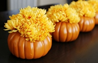 Garden club meeting to focus on pumpkin centerpieces