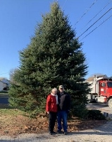 Fortier Drive family donates city's Christmas tree; students decorate it today