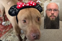 Man accused of starving dog to death turns self in to police