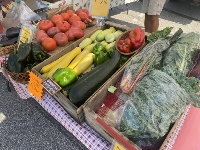 Farmer's markets to make September move back to Common