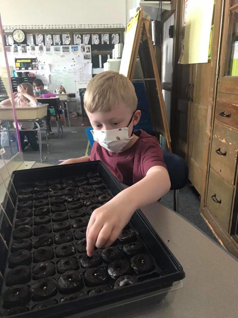 Grant, community support help schools' garden projects bloom