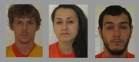 Three held on high bail in violent kidnap, assault case