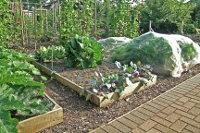 Here's how to raise the bar on raised garden beds