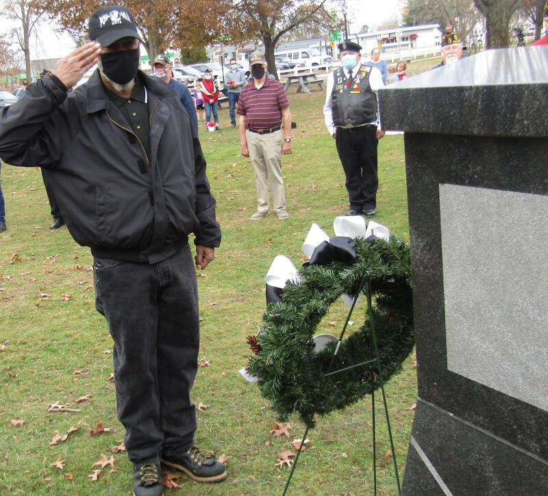 Calls for liberty on Veterans Day: 'I think I want my country back'