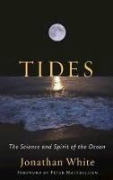 'Tides' author explores one of world's most formidable phenomena