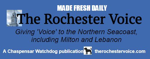 A history of The Lebanon Voice and The Rochester Voice