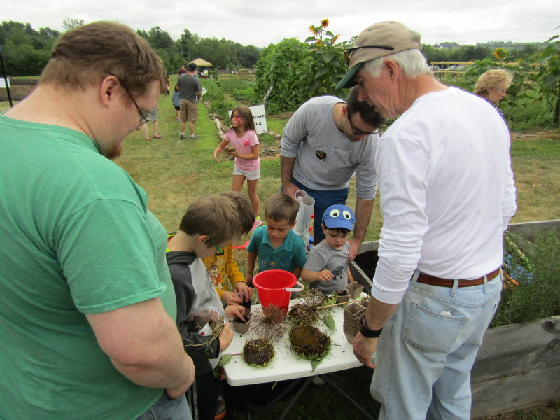 MMRG's WWW festival all about planting the seeds, while having fun