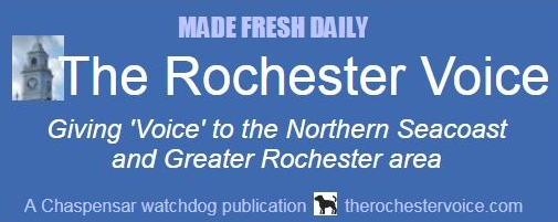 Dare to compare: The Rochester Voice is the smart choice for your company's advertising