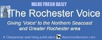 Rochester Voice named finalist in six categories in this year's NHPA Distinguished Journalism contest